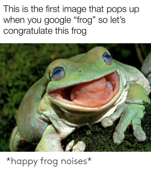 "Google, Happy, and Image: This is the first image that pops up  when you google ""frog"" so let's  congratulate this frog *happy frog noises*"