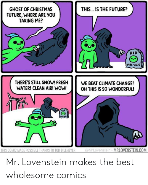 Theres Still: THIS... IS THE FUTURE?  GHOST OF CHRISTMAS  FUTURE, WHERE ARE YOU  TAKING ME?  RIP  1985-2075  THERE'S STILL SNOW! FRESH  WATER! CLEAN AIR! WOW!  WE BEAT CLIMATE CHANGE!  OH THIS IS SO WONDERFUL!  @MrLovenstein MRLOVENSTEIN.COM  THIS COMIC MADE POSSIBLE THANKS TO TOD BILLMEYER Mr. Lovenstein makes the best wholesome comics