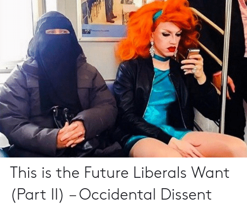 Occidental Dissent: This is the Future Liberals Want (Part II) – Occidental Dissent
