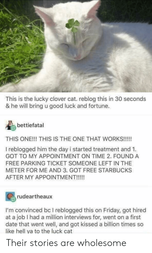 He Will: This is the lucky clover cat. reblog this in 30 seconds  & he will bring u good luck and fortune  bettiefatal  THIS ONE!!! THIS IS THE ONE THAT WORKS!!!!  I reblogged him the day i started treatment and 1  GOT TO MY APPOINTMENT ON TIME 2. FOUND A  FREE PARKING TICKET SOMEONE LEFT IN THE  METER FOR ME AND 3. GOT FREE STARBUCKS  AFTER MY APPOINTMENT!!!!!  rudeartheaux  I'm convinced bc I reblogged this on Friday, got hired  at a job I had a million interviews for, went on a first  date that went well, and got kissed a billion times so  like hell ya to the luck cat Their stories are wholesome