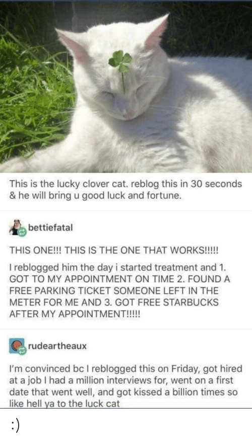 He Will: This is the lucky clover cat. reblog this in 30 seconds  & he will bring u good luck and fortune.  bettiefatal  THIS ONE!!! THIS IS THE ONE THAT WORKS!!!!  I reblogged him the day i started treatment and 1.  GOT TO MY APPOINTMENT ON TIME 2. FOUND A  FREE PARKING TICKET SOMEONE LEFT IN THE  METER FOR ME AND 3. GOT FREE STARBUCKS  AFTER MY APPOINTMENT!!!!!  rudeartheaux  I'm convinced bc I reblogged this on Friday, got hired  at a job I had a million interviews for, went on a first  date that went well, and got kissed a billion times so  like hell ya to the luck cat :)