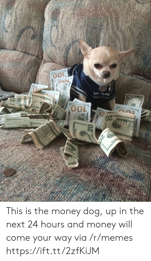 Money Dog: This is the money dog, up in the next 24 hours and money will come your way via /r/memes https://ift.tt/2zfKiJM