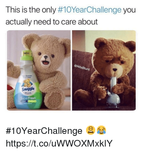 Fresh, You, and This: This is the only #10YearChallenge you  actually need to care about  @HitsBlunt  Snuggle  PLUS  Fresh #10YearChallenge 😩😂 https://t.co/uWWOXMxkIY