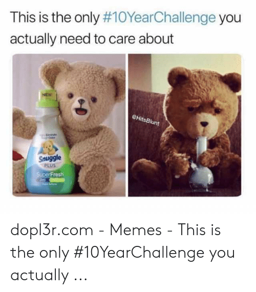Snuggle Bear Meme: This is the only #10YearChallenge you  actually need to care about  NEW  @HitsBlunt  Snuggle  PLUS  SuperFresh dopl3r.com - Memes - This is the only #10YearChallenge you actually ...