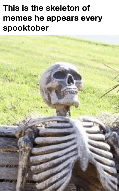 Spooktober: This is the skeleton of  memes he appears every  spooktober