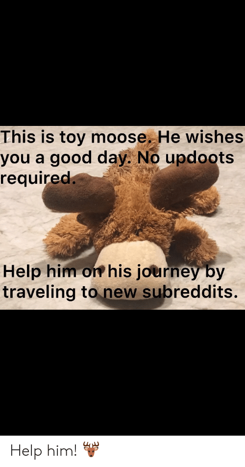 subreddits: This is toy moose. He wishes  you a good day. No updoots  required.  Help him on his journey by  traveling to new subreddits. Help him! 🦌