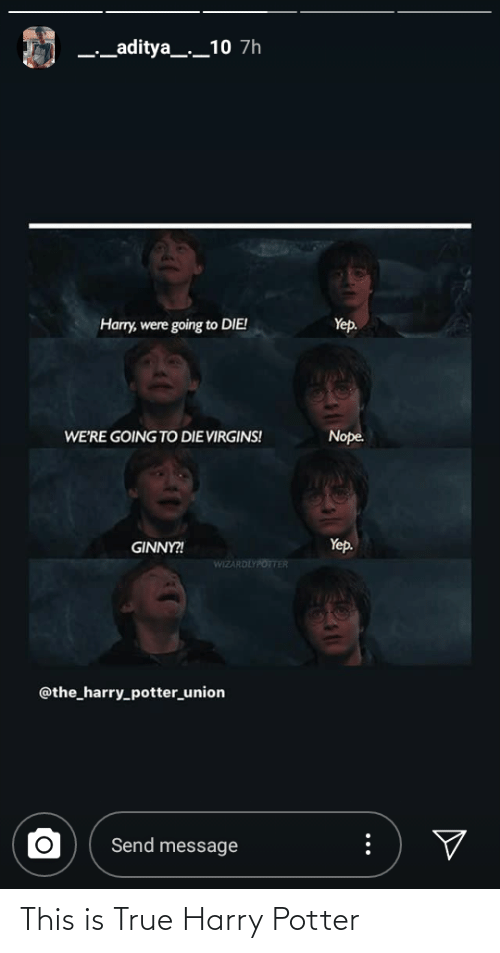 Harry Potter: This is True Harry Potter