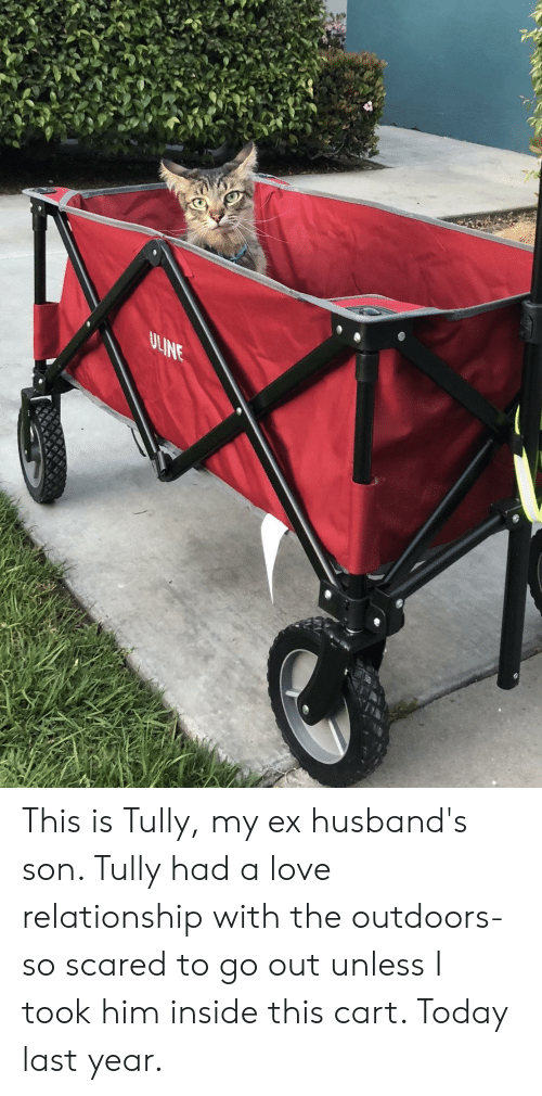 Love Relationship: This is Tully, my ex husband's son. Tully had a love relationship with the outdoors- so scared to go out unless I took him inside this cart. Today last year.