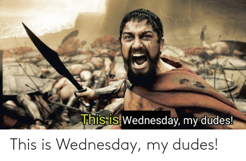 Wednesday: This is Wednesday, my dudes!