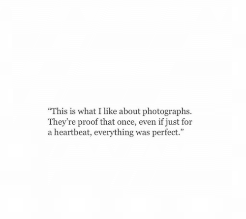 """Proof That: """"This is what I like about photographs.  They're proof that once, even if just for  a heartbeat, everything was perfect."""""""