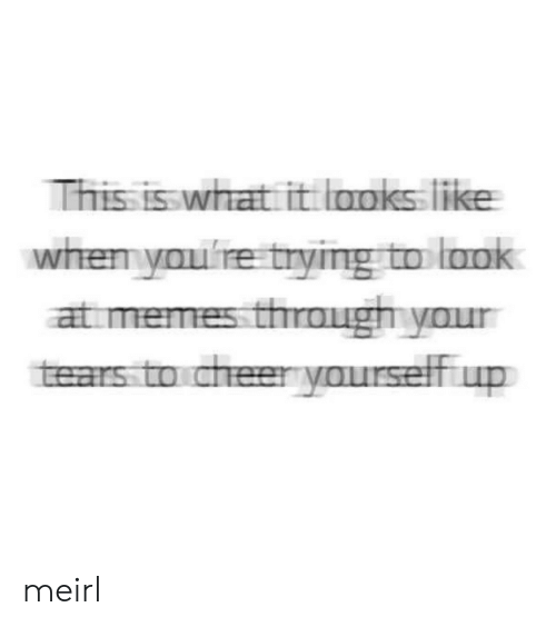 Memes, MeIRL, and What: This is what it looks like  whemyoulre trying to lank  at memes through your  tears to cheer yourself up meirl