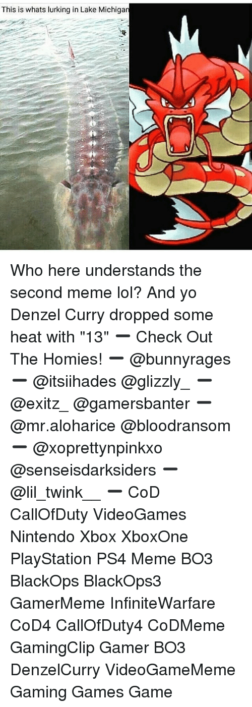 """Meme Lol: This is whats lurking in Lake Michiga Who here understands the second meme lol? And yo Denzel Curry dropped some heat with """"13"""" ➖ Check Out The Homies! ➖ @bunnyrages ➖ @itsiihades @glizzly_ ➖ @exitz_ @gamersbanter ➖ @mr.aloharice @bloodransom ➖ @xoprettynpinkxo @senseisdarksiders ➖ @lil_twink__ ➖ CoD CallOfDuty VideoGames Nintendo Xbox XboxOne PlayStation PS4 Meme BO3 BlackOps BlackOps3 GamerMeme InfiniteWarfare CoD4 CallOfDuty4 CoDMeme GamingClip Gamer BO3 DenzelCurry VideoGameMeme Gaming Games Game"""