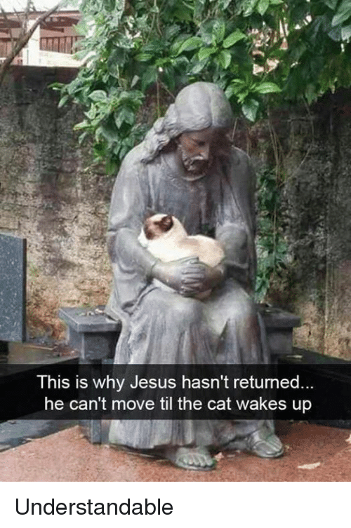 Dank, Jesus, and 🤖: This is why Jesus hasn't returned.  he can't move til the cat wakes up Understandable