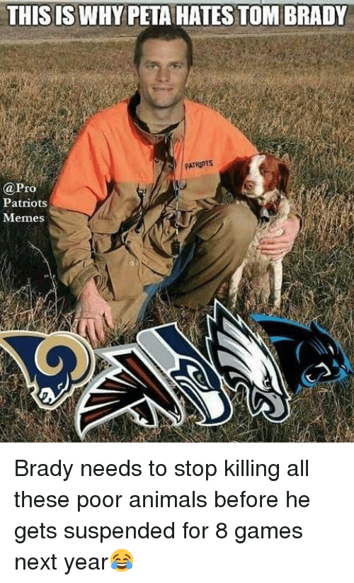 Animals, Memes, and Patriotic: THIS IS WHY PETAHATES TOM BRADY  @Pro  Patriots  Memes Brady needs to stop killing all these poor animals before he gets suspended for 8 games next year😂