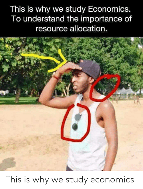 Resource: This is why we study Economics.  To understand the importance of  resource allocation. This is why we study economics