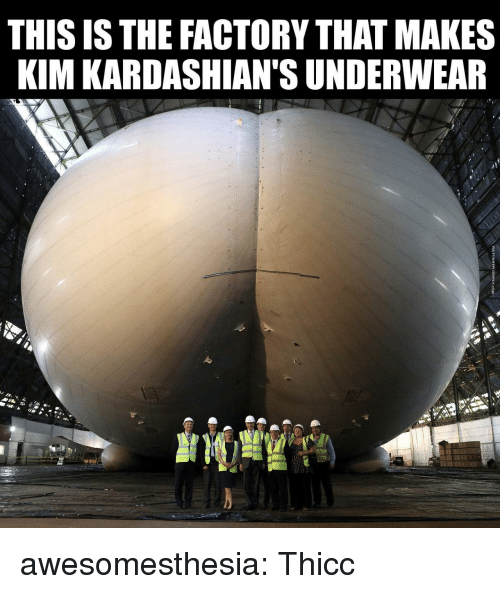 kim kardashians: THIS ISTHE FACTORY THAT MAKES  KIM KARDASHIAN'S UNDERWEAR awesomesthesia:  Thicc