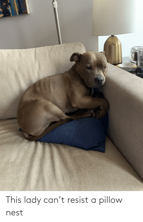 Nest: This lady can't resist a pillow nest