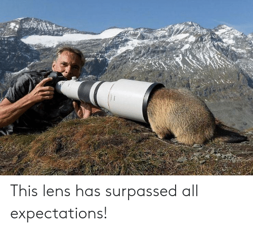 lens: This lens has surpassed all expectations!