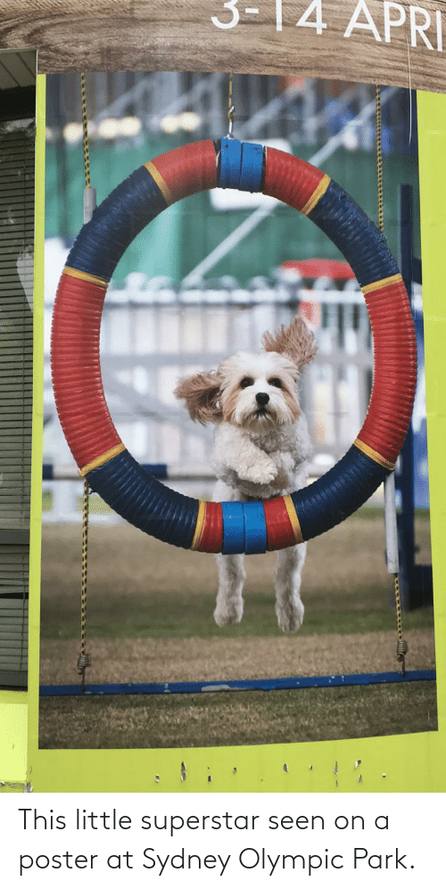 olympic: This little superstar seen on a poster at Sydney Olympic Park.