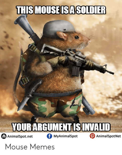 Jerry Mouse: THIS MOUSE ISASOLDIER  YOUR ARGUMENT IS INVALID  AAnimalSpot.net。MyAnimalSpot D AnimalspotNet Mouse Memes