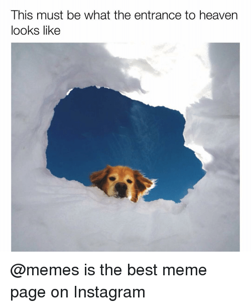 Like Meme: This must be what the entrance to heaven  looks like @memes is the best meme page on Instagram