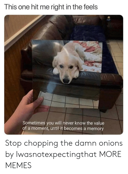 will never know: This one hit me right in the feels  Sometimes you will never know the value  of a moment, until it becomes a memory Stop chopping the damn onions by Iwasnotexpectingthat MORE MEMES