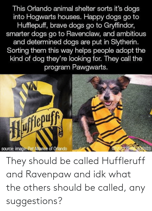 Brave: This Orlando animal shelter sorts it's dogs  into Hogwarts houses. Happy dogs go to  Hufflepuff, brave dogs go to Gryffindor,  smarter dogs go to Ravenclaw, and ambitious  and determined dogs are put in Slytherin.  Sorting them this way helps people adopt the  kind of dog they're looking for. They call the  program Pawgwarts.  Hofitepuf  source: image. Pet Allance of Orlando  ists They should be called Huffleruff and Ravenpaw and idk what the others should be called, any suggestions?