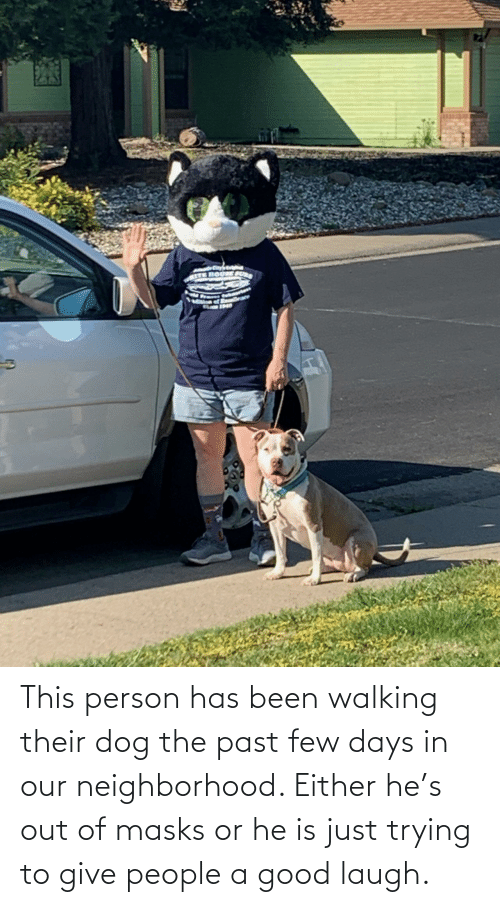 The Past: This person has been walking their dog the past few days in our neighborhood. Either he's out of masks or he is just trying to give people a good laugh.