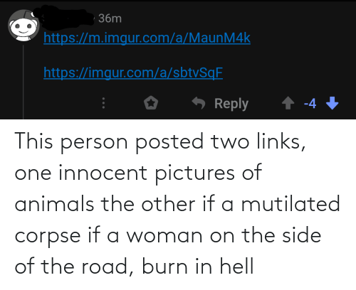 links: This person posted two links, one innocent pictures of animals the other if a mutilated corpse if a woman on the side of the road, burn in hell