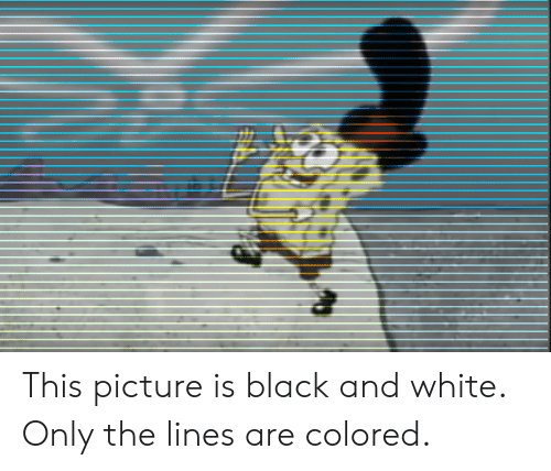 Black, Black and White, and White: This picture is black and white. Only the lines are colored.