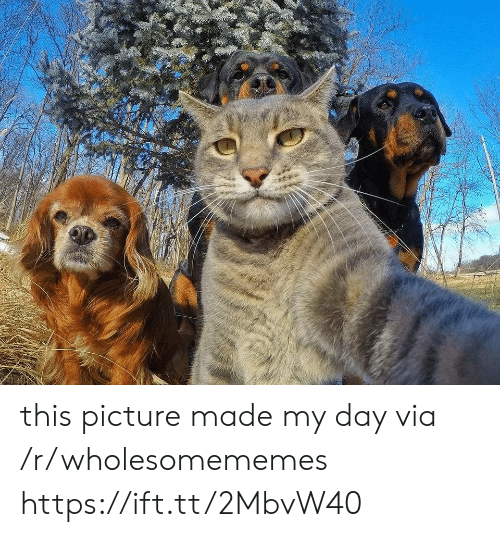 Made My: this picture made my day via /r/wholesomememes https://ift.tt/2MbvW40