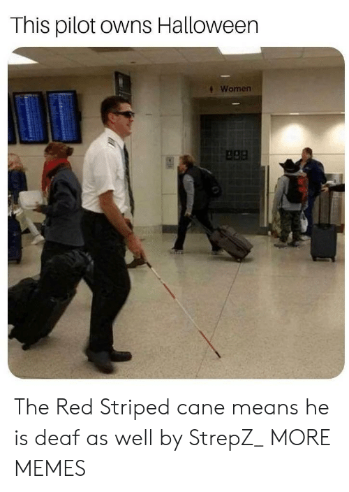 apa: This pilot owns Halloween  Women  apa The Red Striped cane means he is deaf as well by StrepZ_ MORE MEMES