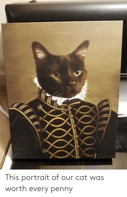 penny: This portrait of our cat was worth every penny