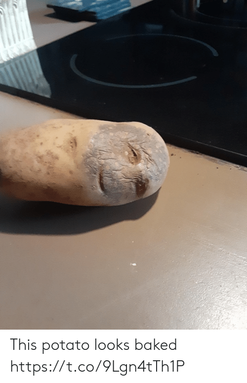 Baked: This potato looks baked https://t.co/9Lgn4tTh1P