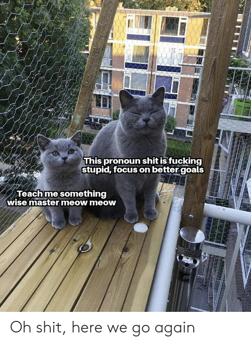 Goals, Reddit, and Focus: This pronoun shit is fucking  stupid, focus on better goals  Teachme something  wise master meow meow Oh shit, here we go again