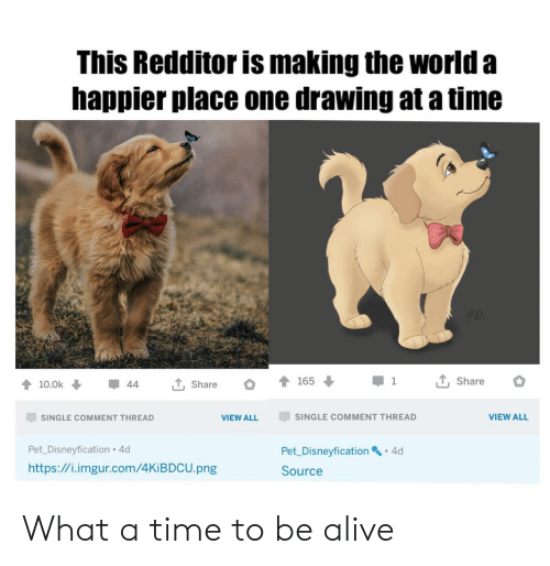 Comment Thread: This Redditor is making the world a  happier place one drawing at a time  T, Share  165  1  T, Share  10.0k  44  SINGLE COMMENT THREAD  VIEW ALL  SINGLE COMMENT THREAD  VIEW ALL  Pet_Disneyfication 4d  Pet Disneyfication 4d  http://i.imgur.com/4KIBDCU.png  Source What a time to be alive