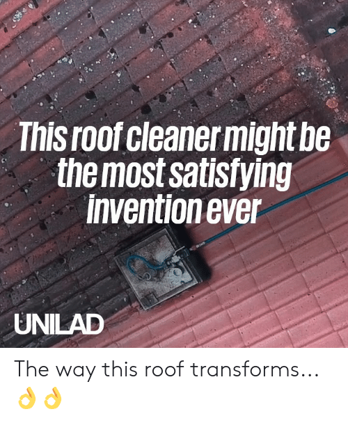 Dank, 🤖, and This: This roof cleanermight be  themost satisfying  invention ever  UNILAD The way this roof transforms... 👌👌