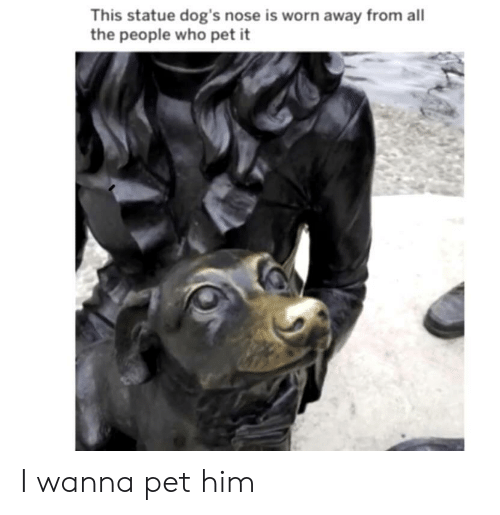 Dogs, All The, and Who: This statue dog's nose is worn away from all  the people who pet it I wanna pet him