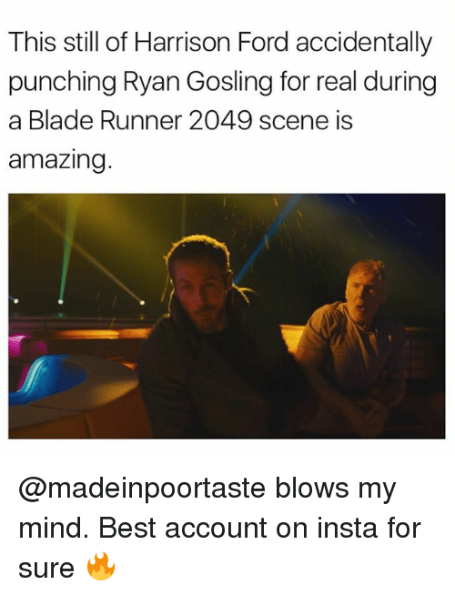 Blade Runner 2049: This still of Harrison Ford accidentally  punching Ryan Gosling for real during  a Blade Runner 2049 scene is  amazing @madeinpoortaste blows my mind. Best account on insta for sure 🔥