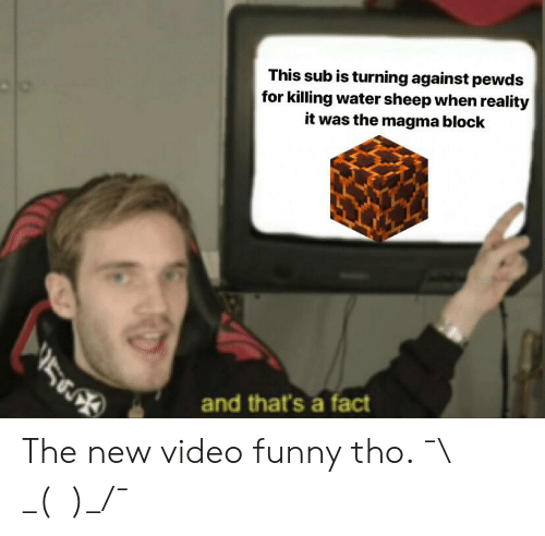 Funny, Video, and Water: This sub is turning against pewds  for killing water sheep when reality  it was the magma block  and that's a fact The new video funny tho. ¯\ _(ツ)_/¯