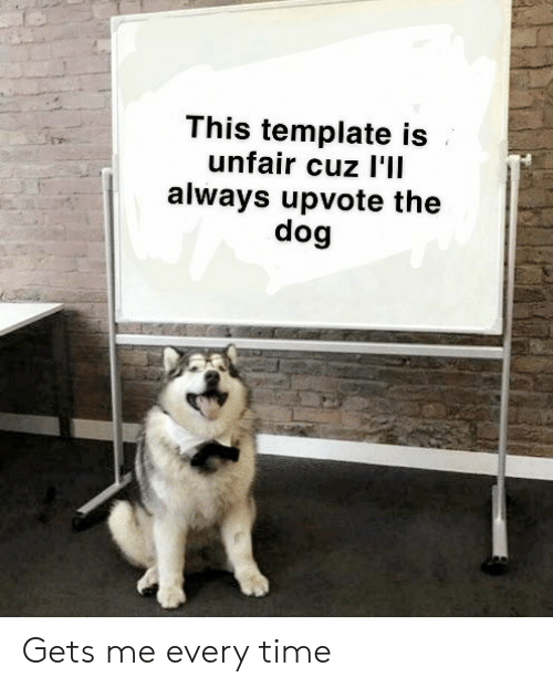 Time, Dog, and Template: This template is  unfair cuz l'lI  always upvote the  dog Gets me every time