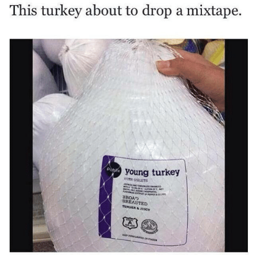 Mixtape: This turkey about to drop a mixtape.  young turkey  WITH GEETS  BROAD  BREASTED