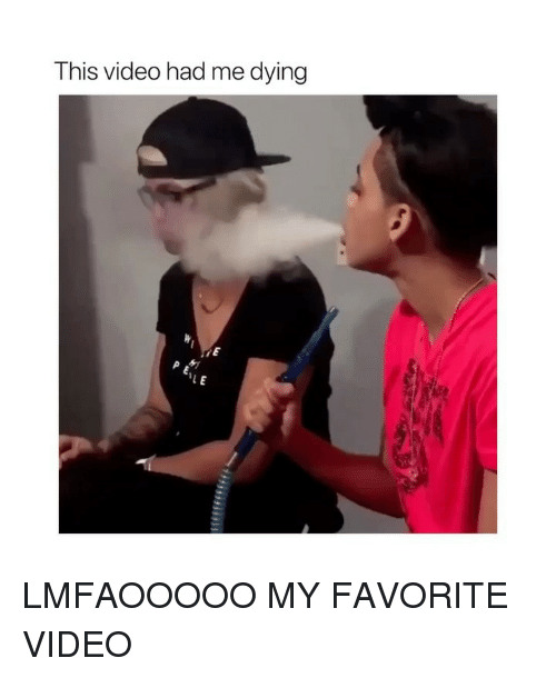 Me Dying: This video had me dying LMFAOOOOO MY FAVORITE VIDEO
