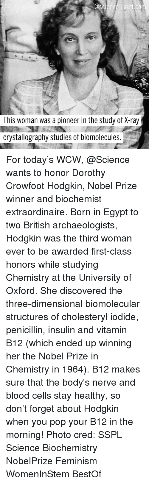 b12: This woman was a pioneer in the study of X-ray  crystallography studies of biomolecules For today's WCW, @Science wants to honor Dorothy Crowfoot Hodgkin, Nobel Prize winner and biochemist extraordinaire. Born in Egypt to two British archaeologists, Hodgkin was the third woman ever to be awarded first-class honors while studying Chemistry at the University of Oxford. She discovered the three-dimensional biomolecular structures of cholesteryl iodide, penicillin, insulin and vitamin B12 (which ended up winning her the Nobel Prize in Chemistry in 1964). B12 makes sure that the body's nerve and blood cells stay healthy, so don't forget about Hodgkin when you pop your B12 in the morning! Photo cred: SSPL Science Biochemistry NobelPrize Feminism WomenInStem BestOf