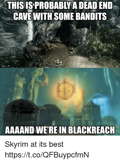 Skyrim, Best, and Cave: THISIS  PROBABLY  A  DEAD  END  CAVE WITH SOME BANDITS  AAAAND WEREIN BLACKREACH Skyrim at its best https://t.co/QFBuypcfmN