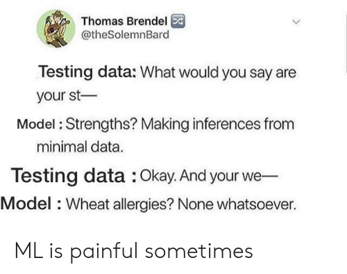Okay, Thomas, and Data: Thomas Brendel  @theSolemnBard  Testing data: What would you say are  your st  Model: Strengths? Making inferences fronm  minimal data  Testing data : Okay. And your we  Model : Wheat allergies? None whatsoever. ML is painful sometimes