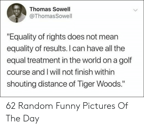"Golf Course: Thomas Sowell  @ThomasSowell  ""Equality of rights does not mean  equality of results. I can have all the  equal treatment in the world on a golf  course and I will not finish within  shouting distance of Tiger Woods."" 62 Random Funny Pictures Of The Day"