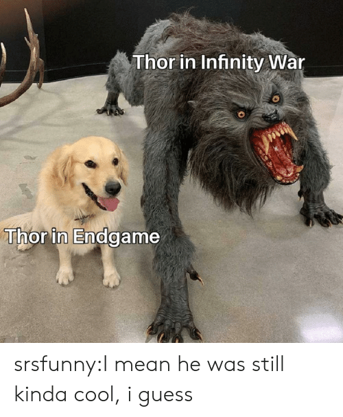 Tumblr, Blog, and Cool: Thor in Infinity War  Thor in Endgame srsfunny:I mean he was still kinda cool, i guess