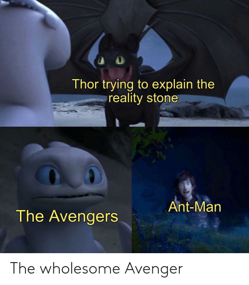 Avengers, The Avengers, and Thor: Thor trying to explain the  reality stone  Ant-Man  The Avengers The wholesome Avenger