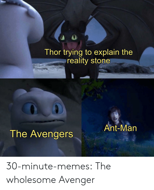 Memes, Tumblr, and Avengers: Thor trying to explain the  reality stone  Ant-Man  The Avengers 30-minute-memes:  The wholesome Avenger